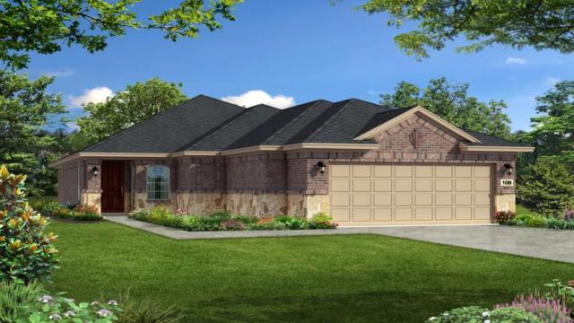 5091 Cassia Way, Round Rock, TX 78665 (#2001309) :: Papasan Real Estate Team @ Keller Williams Realty