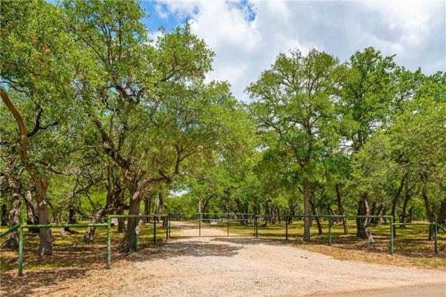 4450 County Road 207, Liberty Hill, TX 78642 (#2018637) :: Zina & Co. Real Estate
