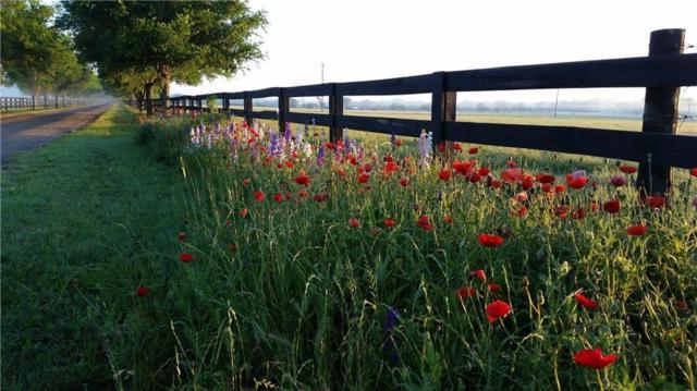 104 River Valley Dr, Georgetown, TX 78626 (MLS #2040573) :: Vista Real Estate