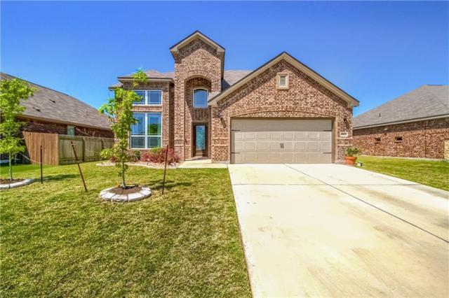1003 Coconut Cv, Hutto, TX 78634 (#2048781) :: The Heyl Group at Keller Williams