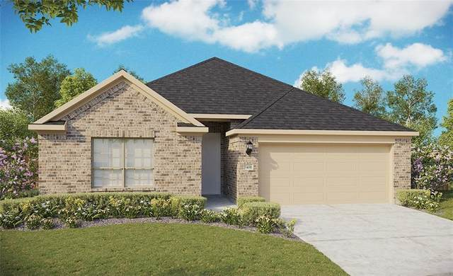 201 Oleander Loop, Buda, TX 78610 (#2068379) :: Green City Realty
