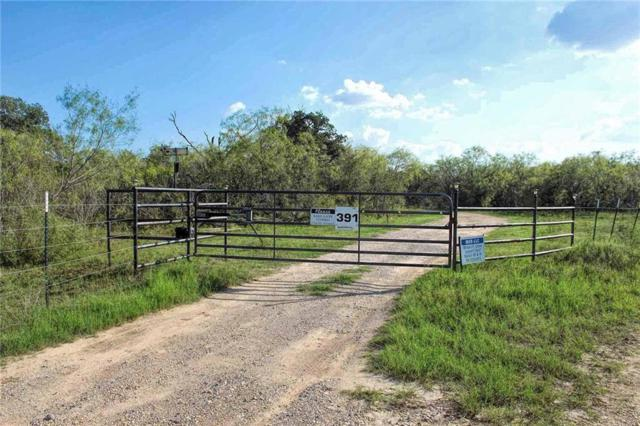 381 Bee Creek Rd, Red Rock, TX 78662 (#2082095) :: KW United Group