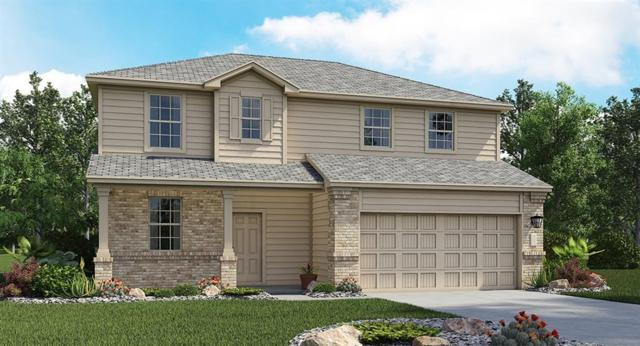 250 Moon Stone Trl, Buda, TX 78610 (#2090608) :: The Gregory Group