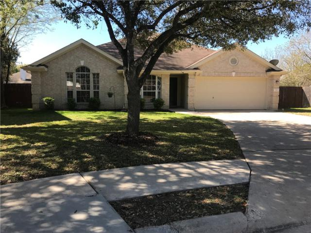 1417 Joffa Ct, Round Rock, TX 78664 (#2091933) :: The Heyl Group at Keller Williams