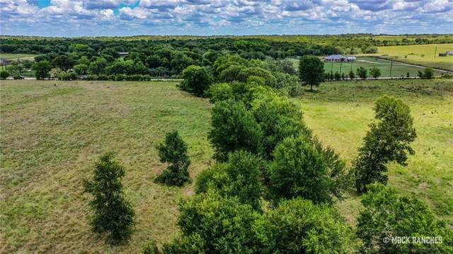4510 Pettytown Rd, Dale, TX 78616 (MLS #2095813) :: Green Residential