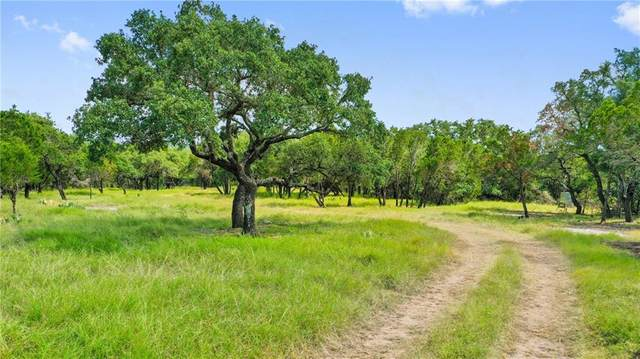 Lot 24 Brock Hollow Dr, Johnson City, TX 78636 (#2096730) :: The Summers Group