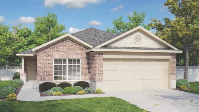 337 Shiner Ln, Georgetown, TX 78626 (#2097802) :: Magnolia Realty