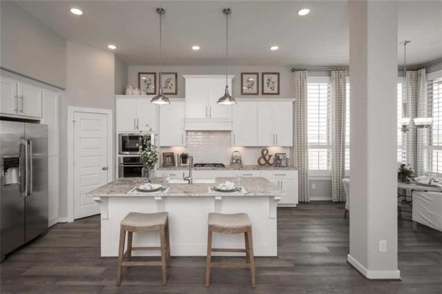 4141 Novella Cove, Leander, TX 78641 (#2115167) :: RE/MAX Capital City