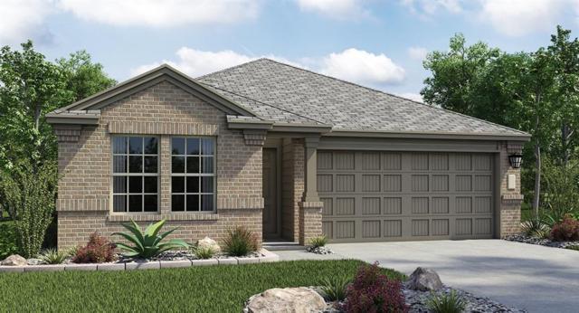 291 Andesite Trl, Buda, TX 78610 (#2116869) :: Papasan Real Estate Team @ Keller Williams Realty