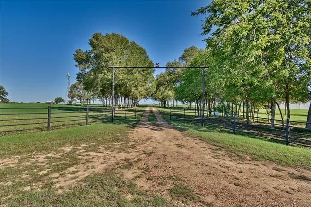 2333 Holub Rd, Schulenburg, TX 78956 (#2124019) :: Green City Realty