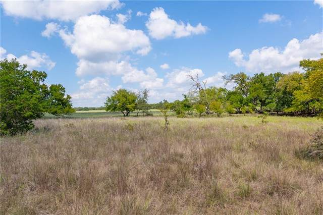 Tract 10 -3 Cr 224, Briggs, TX 78608 (MLS #2125789) :: Vista Real Estate