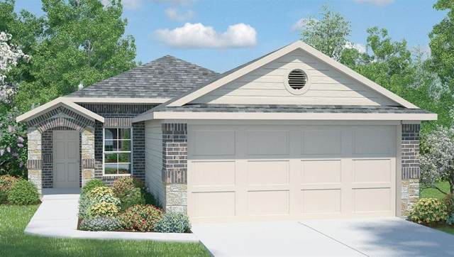 356 Blue Sage Dr, Leander, TX 78641 (#2137148) :: The Perry Henderson Group at Berkshire Hathaway Texas Realty
