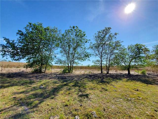 558 County Road 451, Coupland, TX 78615 (#2139180) :: 12 Points Group