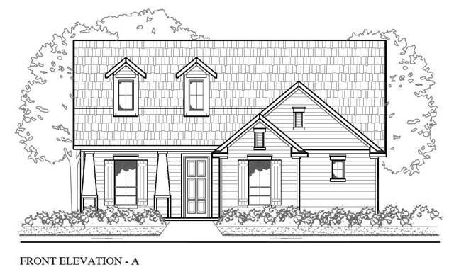 107 Buteo St, Cedar Creek, TX 78612 (#2148803) :: Papasan Real Estate Team @ Keller Williams Realty