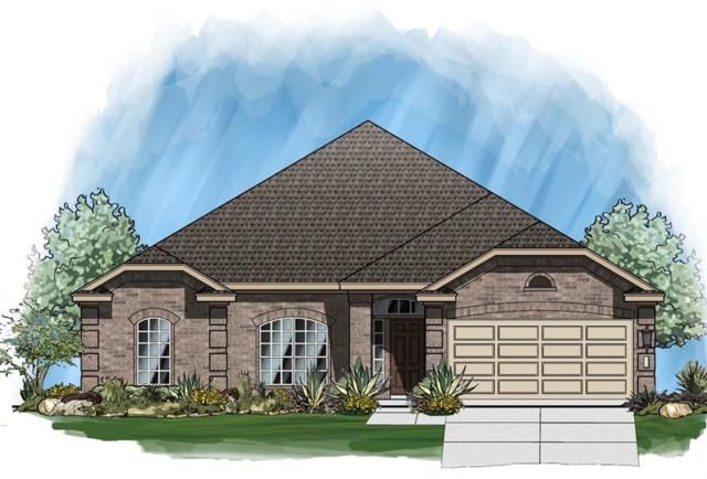 17013 John Michael Dr, Manor, TX 78653 (#2152138) :: Papasan Real Estate Team @ Keller Williams Realty