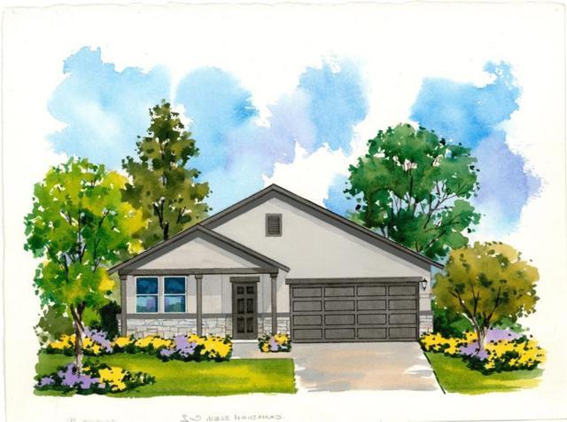 313 Tulum Terrace, Leander, TX 78641 (#2182650) :: 3 Creeks Real Estate