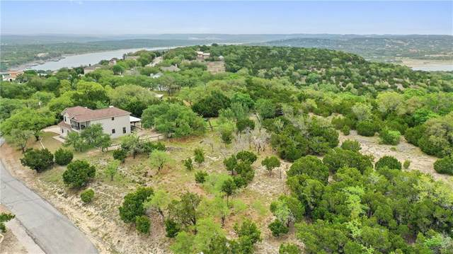 205 S Ronay Dr S, Spicewood, TX 78669 (#2188235) :: Zina & Co. Real Estate