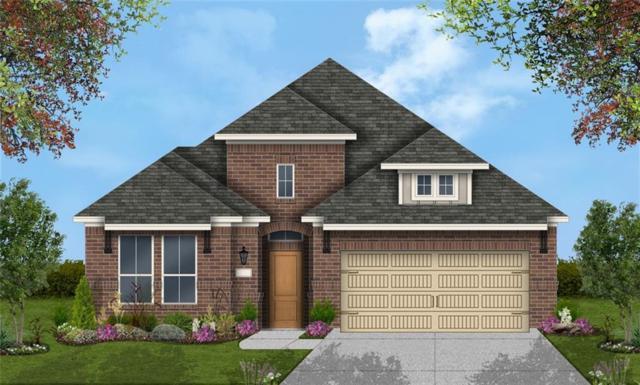 117 Tulip Garden Trl, San Marcos, TX 78666 (#2195753) :: Ben Kinney Real Estate Team
