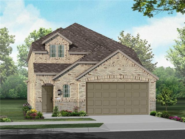 10921 American Mustang Loop Loop, Manor, TX 78653 (#2222302) :: Realty Executives - Town & Country