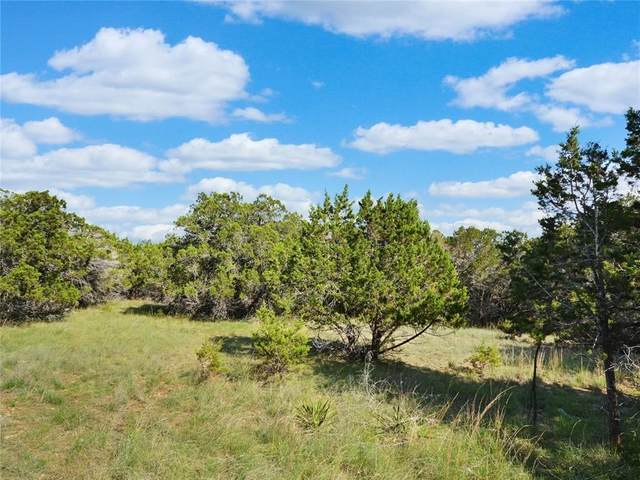 LOTS 29 & 30 Ridge Oak Dr, Wimberley, TX 78676 (#2248447) :: The Perry Henderson Group at Berkshire Hathaway Texas Realty