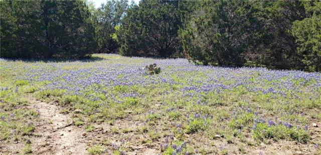 lot 3 TBD Cr 200, Liberty Hill, TX 78642 (#2254277) :: Realty Executives - Town & Country