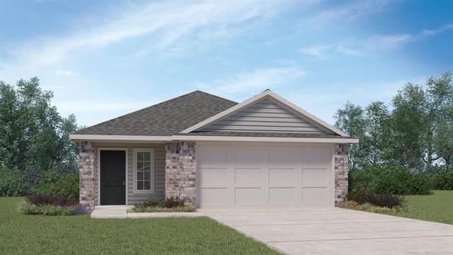 229 Calgary Ln, San Marcos, TX 78666 (#2255836) :: Papasan Real Estate Team @ Keller Williams Realty