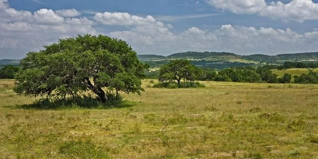 1400 Cattle Creek Rd, Johnson City, TX 78636 (#2260967) :: Lauren McCoy with David Brodsky Properties
