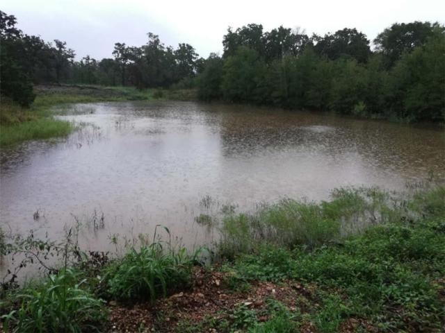 165 Marjess Dr, Cedar Creek, TX 78612 (#2283380) :: The Heyl Group at Keller Williams