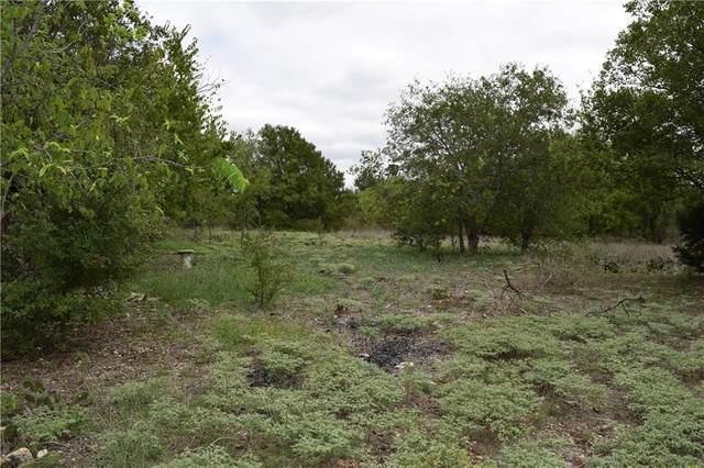 309 Rabbit Run, Georgetown, TX 78626 (MLS #2292019) :: Green Residential