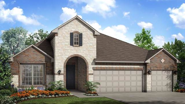 2625 Catalani Cv, Round Rock, TX 78665 (#2313637) :: The Perry Henderson Group at Berkshire Hathaway Texas Realty