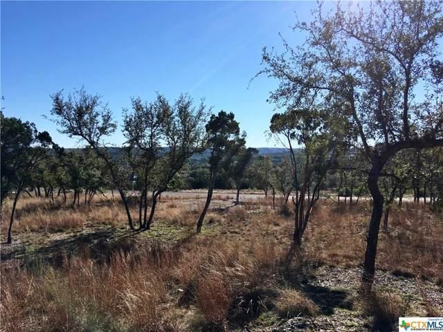 119 Sendera Way, Canyon Lake, TX 78133 (#2331217) :: The Perry Henderson Group at Berkshire Hathaway Texas Realty
