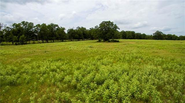 TBD Lois Lane, Paige, TX 78659 (#2340978) :: RE/MAX Capital City