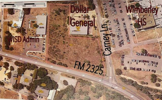 103 Carney Ln, Wimberley, TX 78676 (#2354550) :: R3 Marketing Group