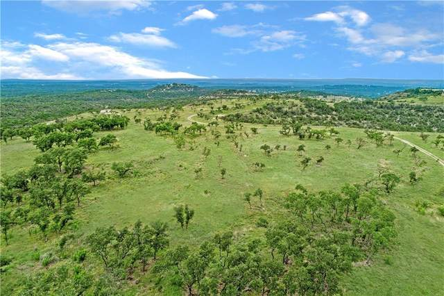 20 acres W Lakeshore Dr, Dripping Springs, TX 78620 (#2383377) :: R3 Marketing Group