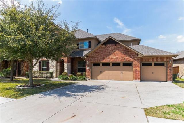 3816 Sapphire Loop, Round Rock, TX 78681 (#2388763) :: Ben Kinney Real Estate Team
