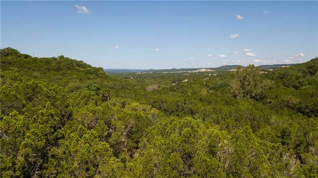 20804 Park Dr, Lago Vista, TX 78645 (#2391302) :: Papasan Real Estate Team @ Keller Williams Realty
