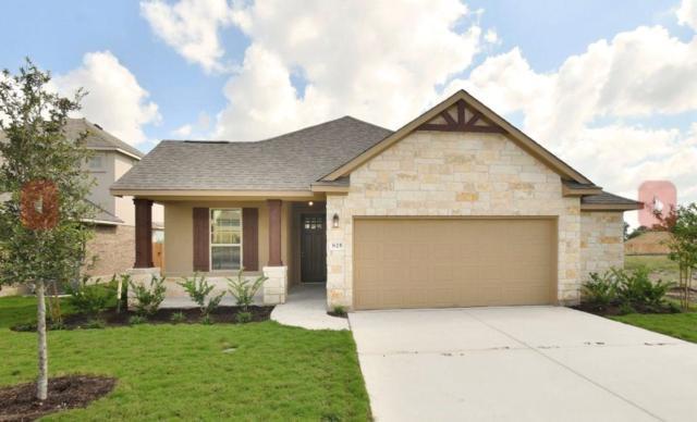 825 Centerra Hills Cir, Round Rock, TX 78665 (#2393163) :: Ben Kinney Real Estate Team