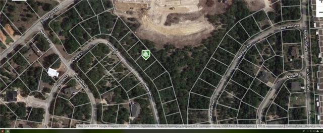 3125 Nobel Cir, Lago Vista, TX 78645 (#2429549) :: The Perry Henderson Group at Berkshire Hathaway Texas Realty