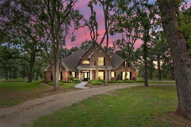 15645 Hawk Ln, Holland, TX 76534 (#2437328) :: Papasan Real Estate Team @ Keller Williams Realty