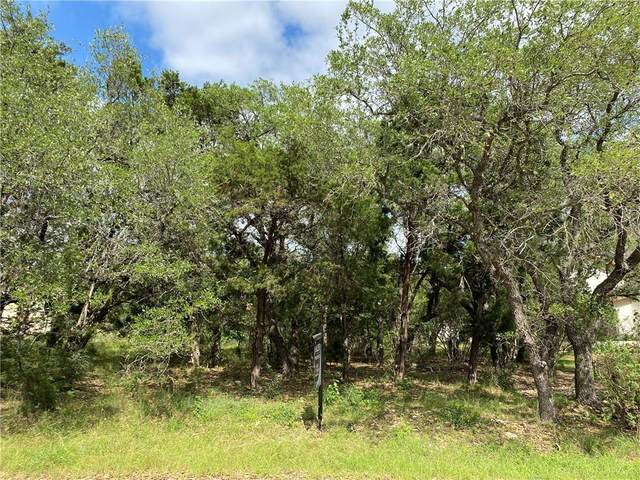 22039 Briarcliff Dr, Spicewood, TX 78669 (#2438811) :: Zina & Co. Real Estate