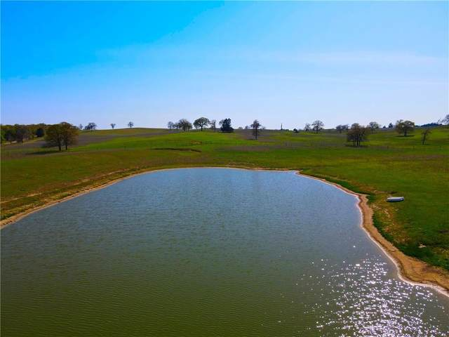 TBD County Road 238A #17, Cameron, TX 76520 (#2440880) :: Zina & Co. Real Estate