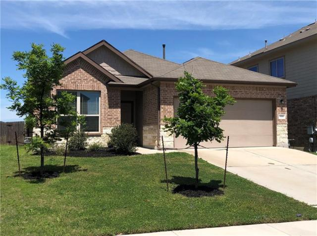 304 Vermilion Marble Trl, Buda, TX 78610 (#2446853) :: The Heyl Group at Keller Williams
