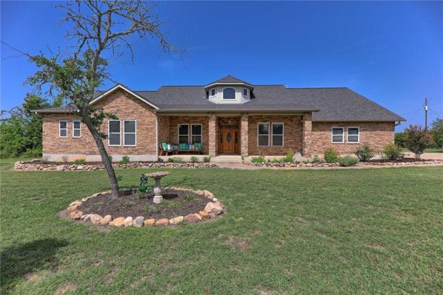 221 Mustang Mesa, Liberty Hill, TX 78642 (#2451859) :: Watters International