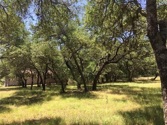 114 Winding Oak, Johnson City, TX 78636 (#2453361) :: Papasan Real Estate Team @ Keller Williams Realty