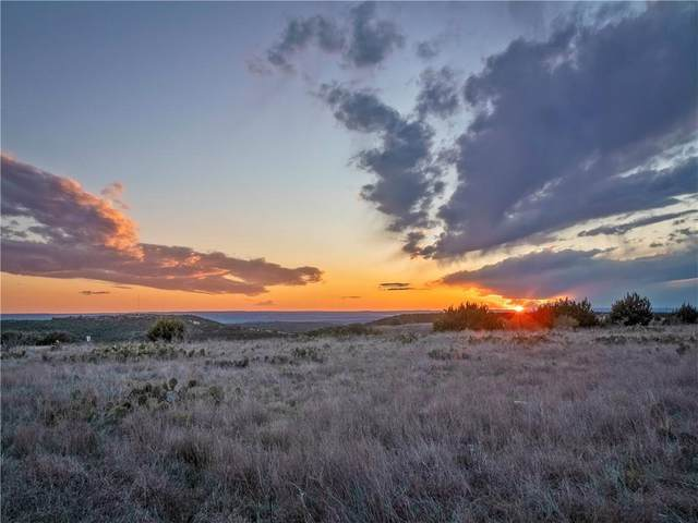 Lot 197A Indian Sky Ct, Bertram, TX 78605 (#2466939) :: The Perry Henderson Group at Berkshire Hathaway Texas Realty