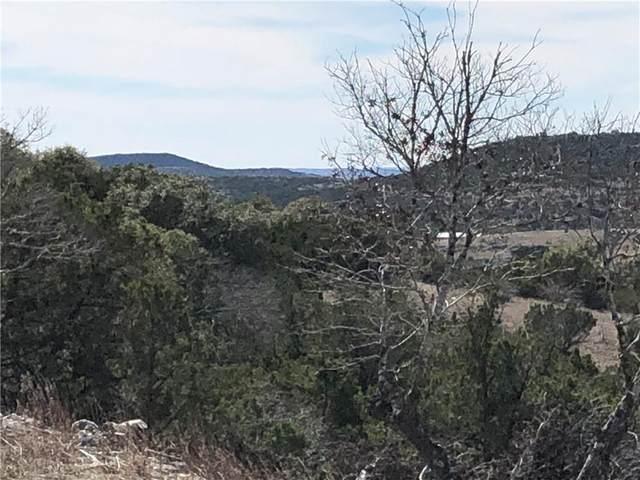 194 Falling Oak Dr, Blanco, TX 78606 (#2472651) :: Zina & Co. Real Estate