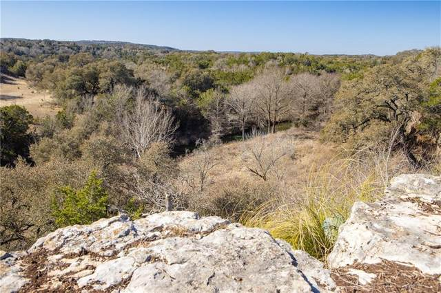 7379 Creek Rd, Dripping Springs, TX 78620 (#2473110) :: Zina & Co. Real Estate