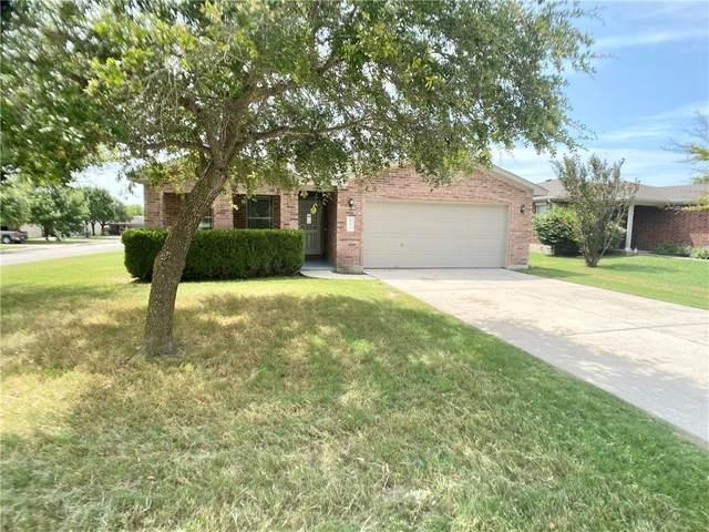101 Palo Duro Cv, Kyle, TX 78640 (#2494377) :: Resident Realty