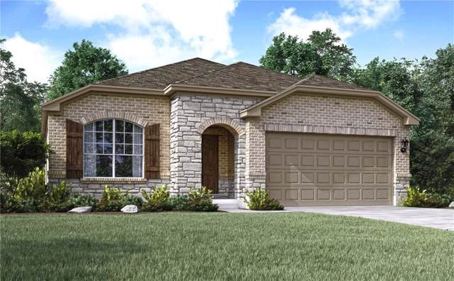 141 Peruvian Ln, Georgetown, TX 78626 (#2498640) :: The Perry Henderson Group at Berkshire Hathaway Texas Realty