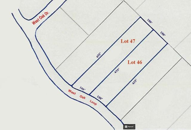 0 West Oak Loop, Cedar Creek, TX 78612 (#2504101) :: The Perry Henderson Group at Berkshire Hathaway Texas Realty
